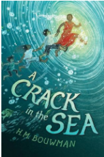 A Crack in the Sea book cover